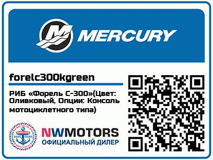 РИБ «Форель С-300»(Цвет: Оливковый, Опции: Консоль мотоциклетного типа)