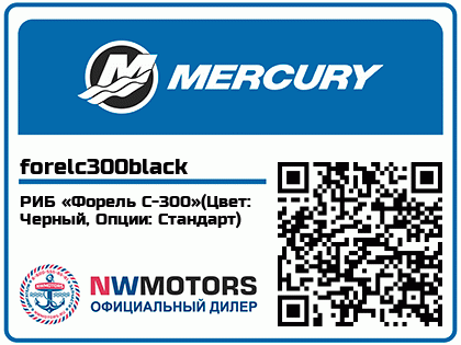 РИБ «Форель С-300»(Цвет: Черный, Опции: Стандарт)