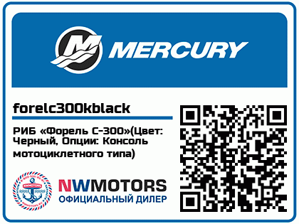 РИБ «Форель С-300»(Цвет: Черный, Опции: Консоль мотоциклетного типа)