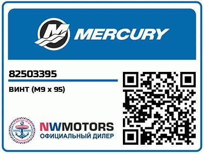 ВИНТ (M9 x 95)