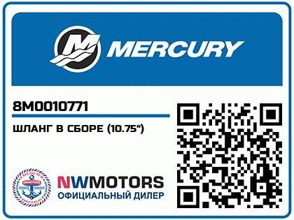"""ШЛАНГ В СБОРЕ (10.75"""")"""
