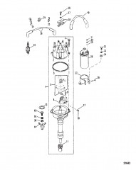 Distributor And Ignition Components