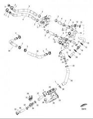 Схема Охлаждение пресной водой Шланги системы охлаждения