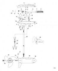 Двигатель для тралового лова в сборе (Модель TT4800) (12 В)