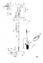 Схема Двигатель для тралового лова в сборе (TR70FBD / TR70FBD-BASS) (24 В)
