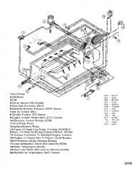 Жгут электропроводки (EFI)