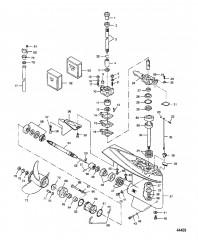 Схема Картер редуктора Модели на 25