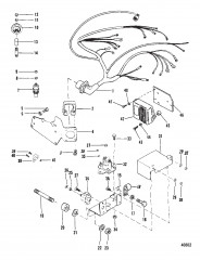 Wiring Harness & Electrical Components