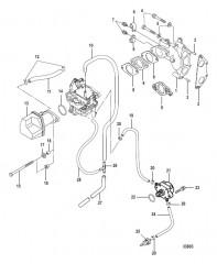 Схема Intake Manifold and Fuel Pump