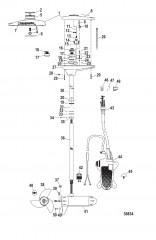 Схема Двигатель для тралового лова в сборе (TR82FB / TR82FBD) (24 В)