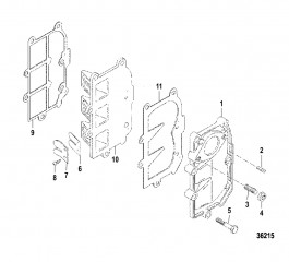 Reed Plate/Manifold Assembly