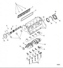 Схема Блок цилиндра Коленчатый вал и распределительный вал